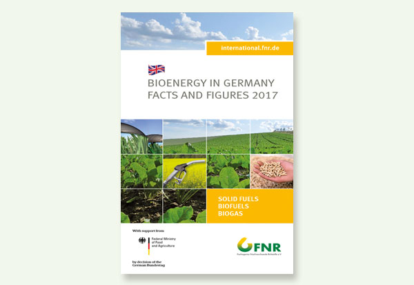 Bioenergy in Germany - Facts and Figures 2017